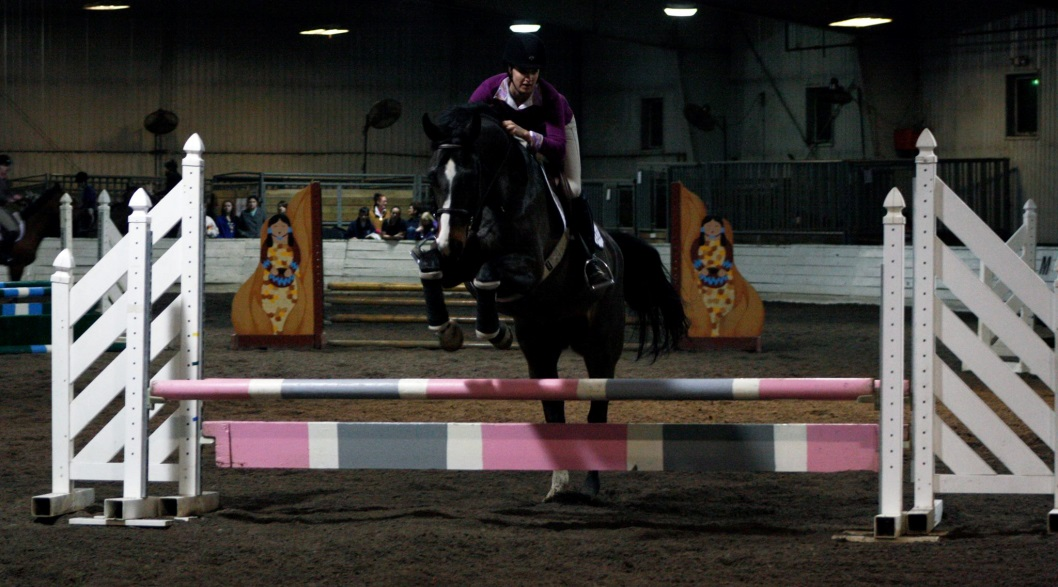 Interested in judging equestrian shows