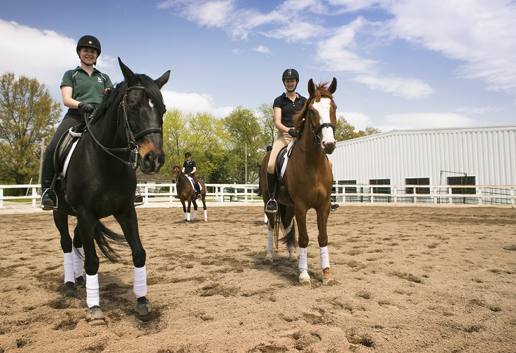 Bachelors in equestrian students participate in April events