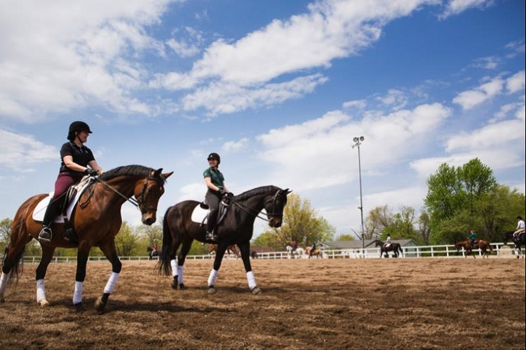 William Woods equestrian students make the most out of clinics.