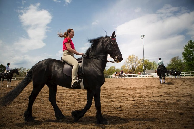 Bachelors in equestrian studies students practice saddle seat.