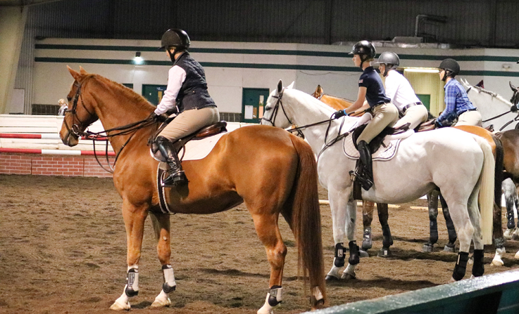 3 tips for your next equestrian clinic